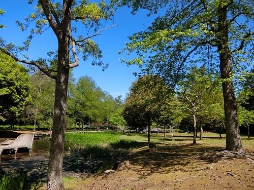 Sakasagawakoen